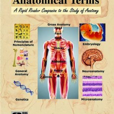 UNDERSTANDING ANATOMICAL TERMS
