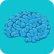 Neuroanatomy (4)
