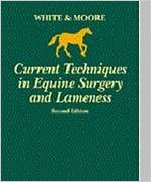 Current Techniques In Equine    Surgery And L...