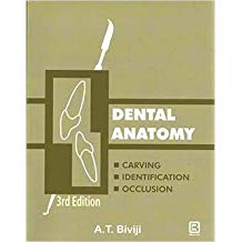 DENTAL ANATOMY CARVING, IDENTIFICATION AND OCCLUSION